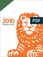 ING NV 2010.pdf