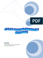 PADIE.pdf