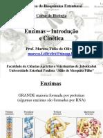 Aula Enzimas1 Bioqestrut