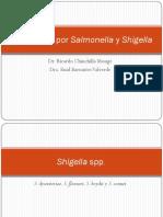 EI11 Bacterias Intestinales II Salmonella y Shigella Dr. Chinchilla