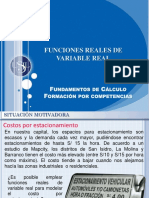 Funciones Reales de Variable Real