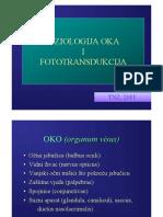 Fiziologija Oka 2011