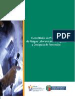 manual_delegado_prevencion_osalan_2014.pdf