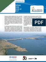 BOLETIN-HIDROELECTRICAS-Y-AMBIENTE.pdf