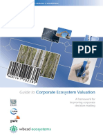 Guide to Corporate Ecosystem Valuation