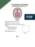 Labo-FisQui1-N-1-Densidad-y-peso-molecular-del-aire.docx