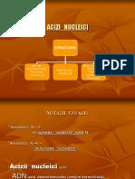 acizi_nucleici