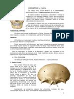 Osteologia-de-cráneo.pdf