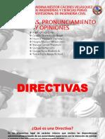 Pronunciamientos Directivas y Opiniones