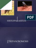 Tema 8 2013 Histoparasitos Pptx