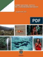 IV INFORME NACIONAL DE BIODIVERSIDAD_2010.pdf