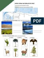 Guia de Sintesis - Segundo Básico (Zonas Naturales de Chile)