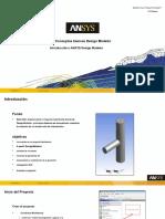 DM-Intro 17.0 WS1.1 DesignModeler Basics.en.Es