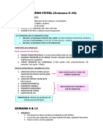 PERIÓDO FETAL APUNTES.docx