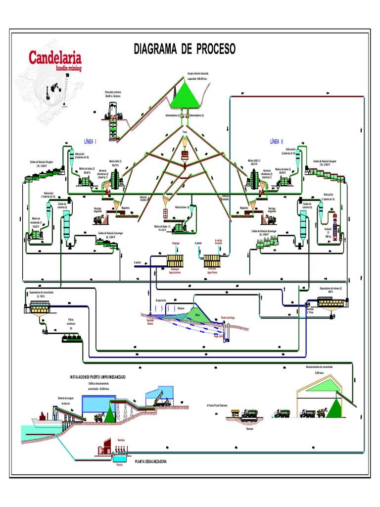 diagrame cu opțiuni live)