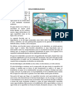 ciclo hidrologico.docx
