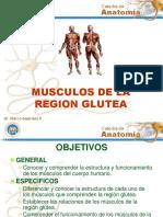 Músculos Región Glútea