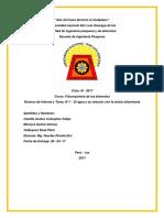 INFORME FISIOQUIMICA.docx