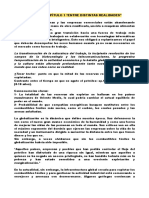 Resumen P1 SAE.doc