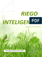 Riego Inteligente1