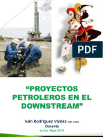 UDABOL Proyectos en Downstream 180528