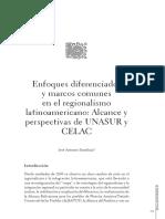 SENAHUJA, Enfoques diferenciados y marcos comunes en el regionalismo.pdf