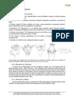 1-Anacardiaceae