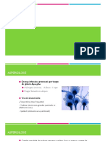 Aspergilose.pdf
