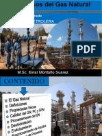 Procesos del GN.pdf