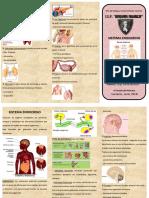 Trip Sistema Endocrino