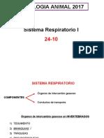 T6RespiratorioI