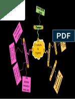 Mapa Conceptual Del Combate de Angamos
