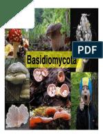 Agaricomycotina_2015.pdf