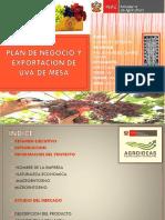 282951655 Plan de Negocio y Exportacion Uva de Mesa Pptx