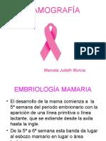 mamografias pdf