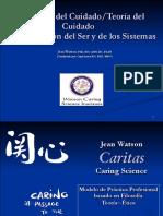 La Ciencia Del Cuidado Teoria Del Cuidado Spanish