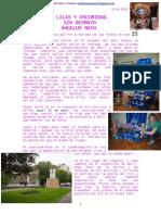 LILAS Y OSCURIDAD. SIN DESMAYO. ÁNGELUS MAYO.pdf