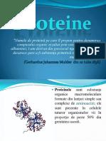 199341305-Proteine.pdf