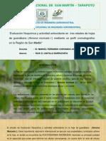 Presentacion Perfil .pptx.Ultima