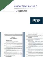 Curs 1 PLP Rugaciuni