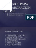 Criterios Para La Elaboración Del PSP