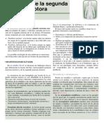 SEGUNDA NEURONA MOTORA.pdf