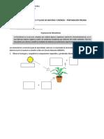 Guía-N°-4-FOTOSINTESIS-Y-CADENAS-ALIMENTARIAS-6°-Básico.pdf