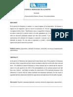 283646591-Informe-Del-Aluminio.doc