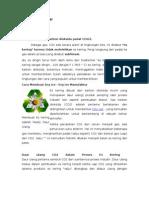 Karbon Dioksida Padat