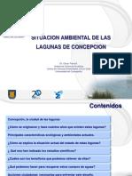Situacion ambiental Lagunas de Concepción  OParra.pdf