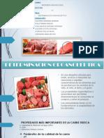Determinacion Organoleptica de la Carne