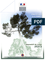 2013 Dossier Presse FF Int