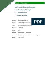329764994-ABastida-Reporte-de-Clasificacion-de-Plantas-y-Hongos.docx