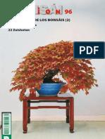 Bonsai Pasion – Número 96.pdf